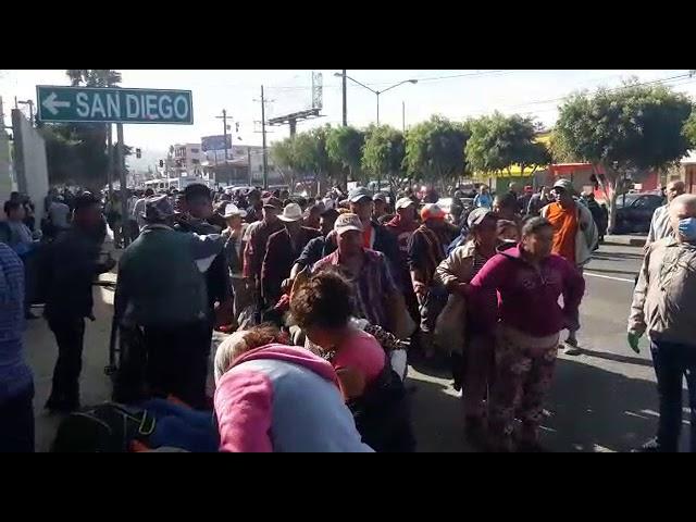 Siguen llegando migrantes a Tijuana el ultimo grupo es de 870 personas