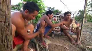 Amazonas: Von Belem nach Tabatinga - Auf legendären Routen