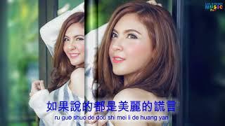 林淑容-你为什么 -Lin shu rong-Ni wei shen me