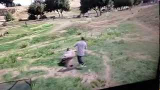 GTA-5 Killing cows