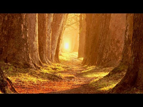 "Peaceful Music, Relaxing Music, Instrumental Music, ""Portugal"" by Tim Janis"