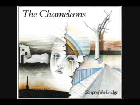 The Chameleons - Paper Tigers