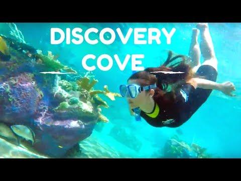 Discovery Cove - Orlando, Florida 2017