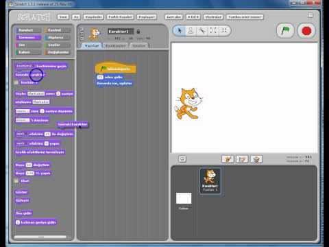 Scratch Kediyi Yürütme
