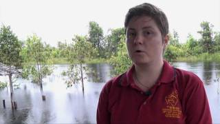 Susan Ceyene on her research about orangutans in peat swamp forests