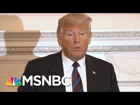 Nicolle Wallace: John McCain In Death Was Able To Shame Donald Trump In Life | The 11th Hour | MSNBC