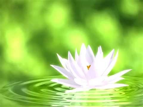 White Light Healing Meditation