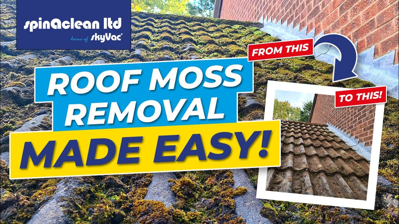 Best Woodinville Wa Roof Moss Removal