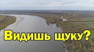Де шукати щуку на незнайомій річці? Рибалка на спінінг восени / Рибалка з Aikoland TV