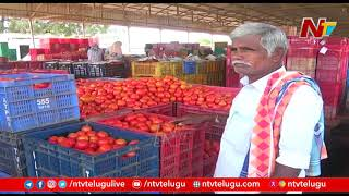 Anantapur Tomato Farmers Suffer Huge Loss as Tomato Rate Fall Less than One Rupee per kg | Ntv
