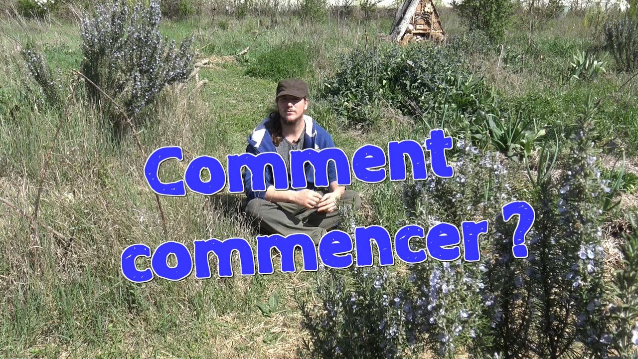 comment commencer en permaculture ou en agro cologie youtube