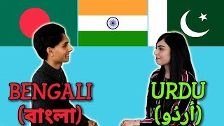 Similarities Between Bengali and Urdu