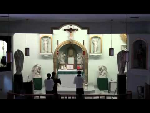Training Video for Altar Servers(Full Version,Low Mass)