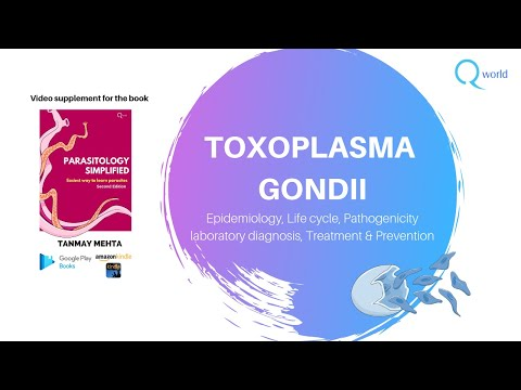 Toxoplasma Gondii : Parasitology Simplified: Review for USMLE and NEXT/NEET-PG