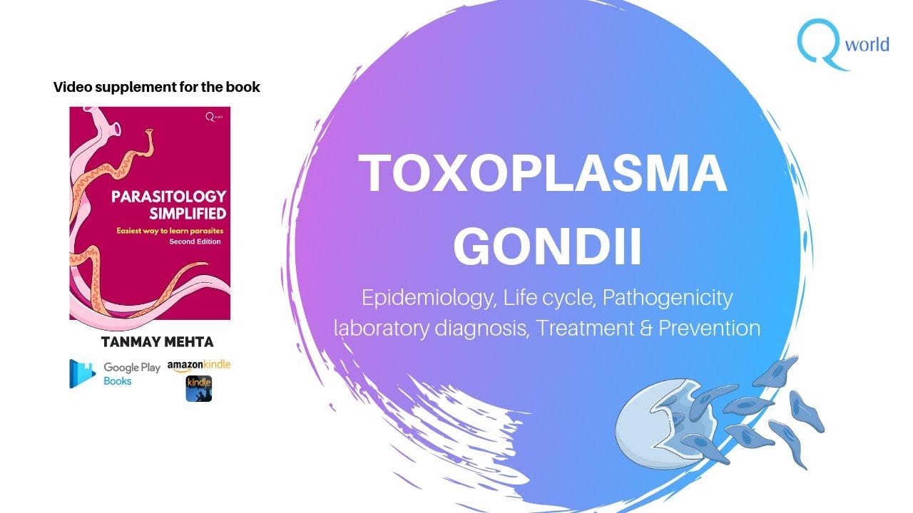 toxoplazma hogyan lehet azonosítani)