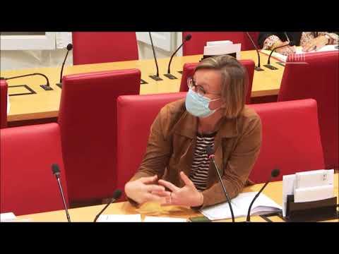 Download Intervention en Commission des Lois à l'Assemblée nationale - IAI