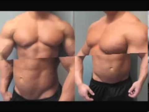 turinabol cycle before and after