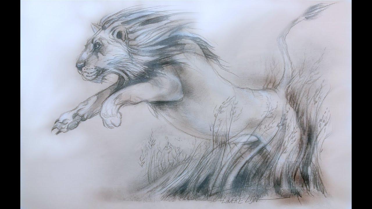 Leeuw tekenen potlood tekening youtube for Tekenen in 3d