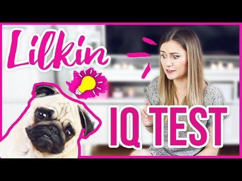 LILKIN IQ TEST