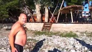 видео Маслиниада в Баре 5 декабря 2015 г |