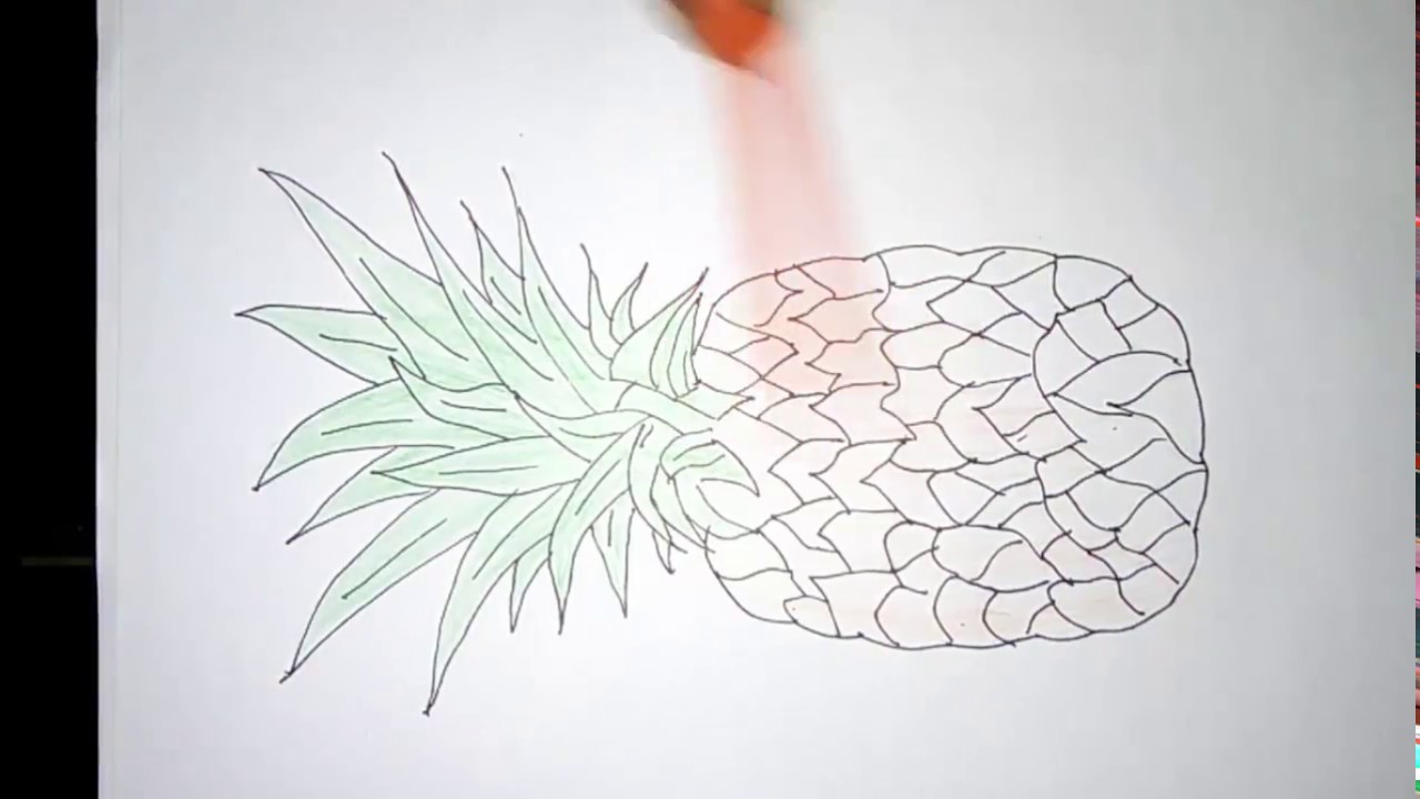 Pineapple Fruit Drawing Ideas Very Easy And Quick Youtube