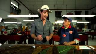"""Veracruz, """"Sin rumbo fijo""""  – Programas y Cápsulas"""