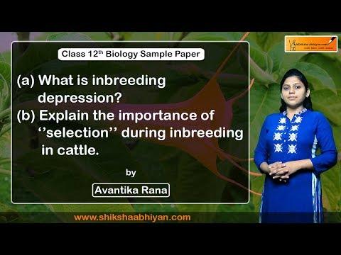 Q17 What is inbreeding depression?-#CBSE Class 12 Biology
