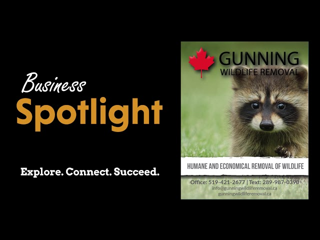 Gunning Wildlife Removal - Business Spotlight