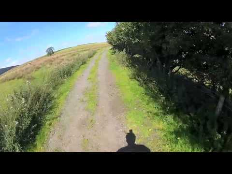 Talybont Forest Mountain Biking Brecon