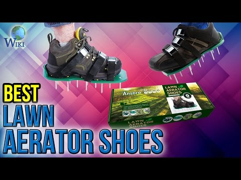 5 Best Lawn Aerator Shoes 2017