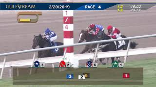 Gulfstream Park Replay Show | February 20, 2019