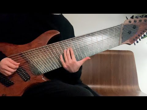I Play 14 String Guitar