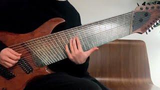 A 14 String Guitar