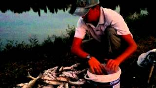 Итоги рыбалки 24.08.2013 Уштобе