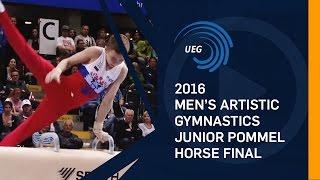 2016 Junior Pommel Horse final European Championships - Bern (SUI)