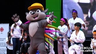 And the Pan Am Games Mascot Is... Pachi the Porcupine
