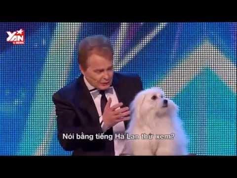 Talking Dog Wendy at Britain's Got Talent 2015