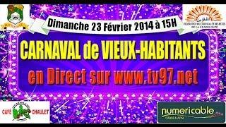 CARNAVAL 2014 DE VIEUX-HABITANTS