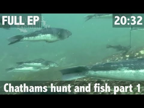 HUNTING AND FISHING CHATHAM ISLAND STYLE