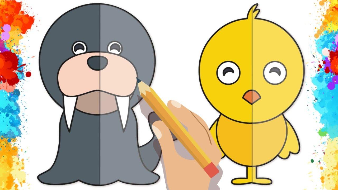 Fok Ve Civciv Nasıl çizilir Boyama Sayfası çocuklar Için Boyama