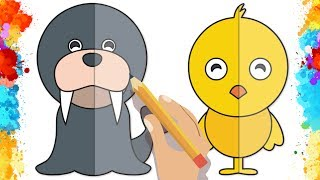 How to Draw Seals and Chicks Coloring Page for Kids, Coloring Book