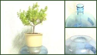 [DIY Aqua Pot] 바질트리 수경재배 통 만들기…