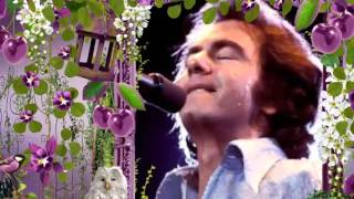 Neil Diamond - Crunchy Granola Suite