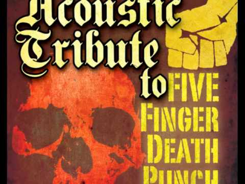 Never Enough - Five Finger Death Punch Acoustic Tribute