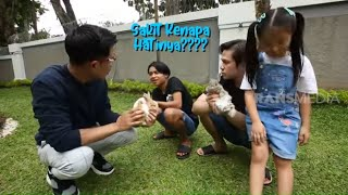 Cici Thalia dan Onyo Sedih, Kelincinya Sakit | HAPPY DAY (13/03/21) Part 1