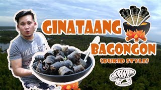 Ginataang Bagongon (Horn Snail with Coconut Milk)  - Accelerates a cure for cancer??