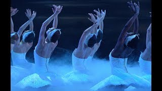 Swan Lake: All in the arms | English National Ballet