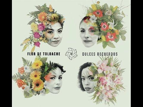 Flor de Toloache   Dulces Recuerdos Lyric Video