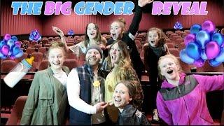 The Big Gender Reveal! 🍼 (WK 324.7) | Bratayley