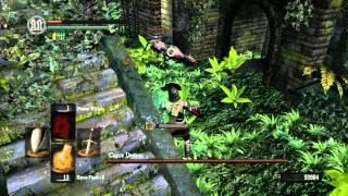 Dark Souls Full Game Deathless Run